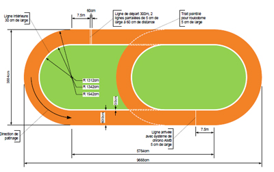 TRACK amp FIELD Facility Specification Guide